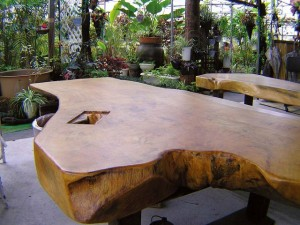 デイゴテーブル