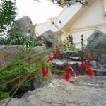 沖縄市 K氏邸 和風ロックガーデン