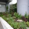 那覇新都心メディアビル 花いっぱいの庭