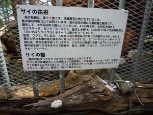 沖縄の珍風景〜猛獣〜由来